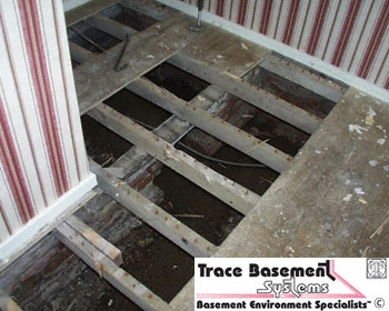 Cleanspace Water In Crawlspace Sub Floor